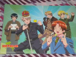 Hetalia Poster 1 by pie1313