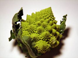 Fractal Broccolli by mobydisk