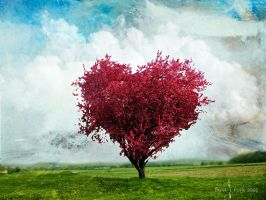 The Love Tree by Sonicx1661