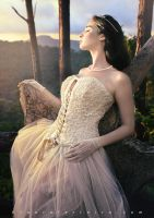 Some sort of Fairytale 5 by Laura-Ferreira