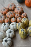 crackled pumpkin decorations - 1:12 scale by abohemianbazaar