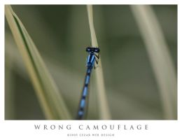 Wrong Camouflage by cezars