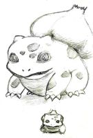 Bulba by Thwan-Condu