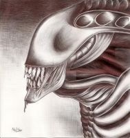 Xenomorph - Penwork by NightmareSherbert