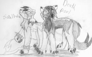 Saultada and DeathPool by SilverStar2