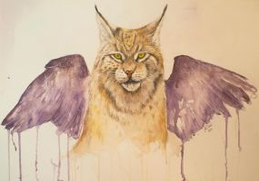 Lynx with wings watercolor painting by draconiannn