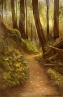 Forest Path by AlineMendes