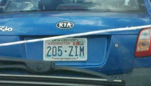 ZIM License Plate by Insanity-C
