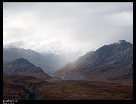 Denali afternoon by Rebecca329