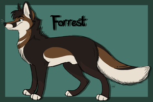 Forrest Temp Reference Sheet by mirzers