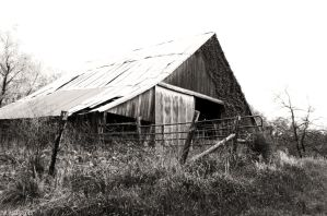 Old Barn by the Road by Brasier76