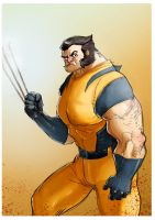 Wolverine by fifoux