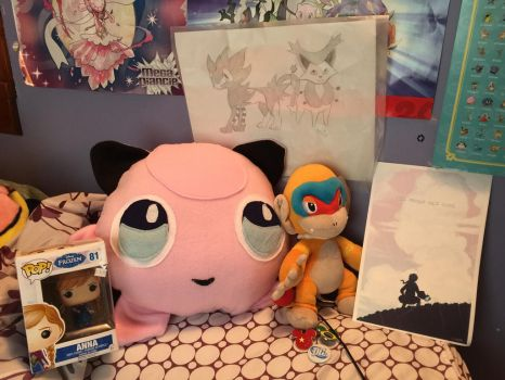 Stuff I got at Comic con by SusanLucarioFan16