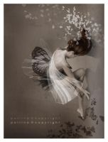 Metamorphosis I by pollina
