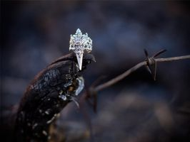 Gothic Adjustable Claw Winged Divinity Ring by Johanna-Ferrius