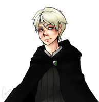 HP: Draco M by cannorachan