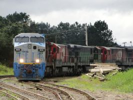 AC44I 9839 leading the train by Alexandre-ue