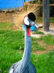 zoo.. by valymeow