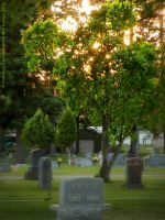 Cemetery by rocamiadesign