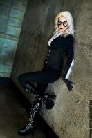 Black Cat 1 By zazabelle23 by Typical-Mental