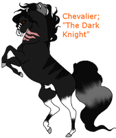 The Dark Knight| Chevalier by KermTheDoge