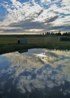 X Country Course Reflection by viva-la-cheese