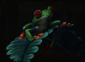 Tree Frog 2 by nudge1