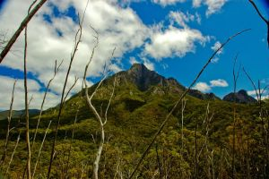 Mt Barney by Mitchography
