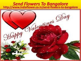 Valentine Day 2016 Flowers Delivery In Bangalore 4 by ayeshatrivedi