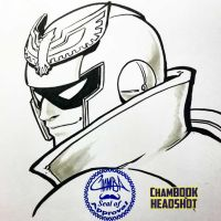 ChamBOOK Headshot - Captain Falcon by theCHAMBA