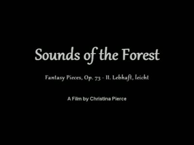 Sounds of the Forest by pettyartist