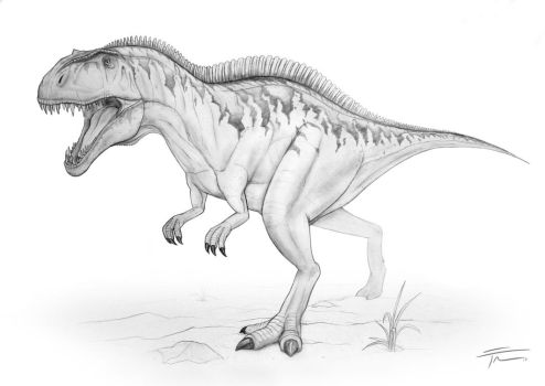 Acrocanthosaurus Sketch by nick-tyrrell