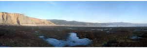Tide pool panoramic by DR3AMS1nD1G1TAL
