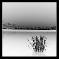 les eaux blanches by Anrold