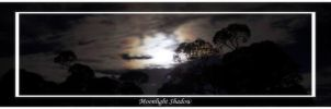 Moonlight Shadow by Vocal-Image