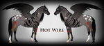 Hot Wire Ref by Drasayer