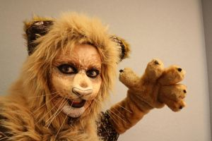 Lion Character Makeup by crummywater