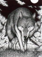 Lonely Wolf by The-Switcher