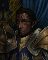 Warden Commander Alim Surana by DragonReine