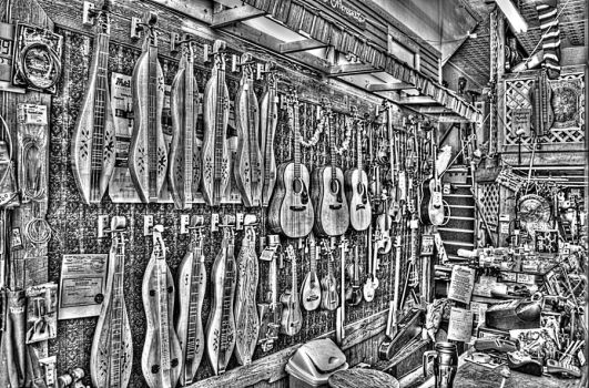 Dulcimer Shop by Reginhild