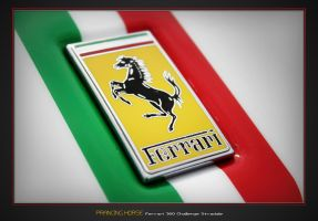 Italian Stallion by Stephen-Coelho