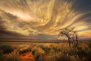 Aus Vista Cloud by Zefisheye