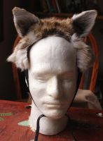 New ears - 10-18-14 by lupagreenwolf