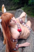 Horo Cosplay from Spice and Wolf by Ao-nir