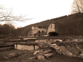 Old: Ruins of Alvastra Abbey I by Photopathica