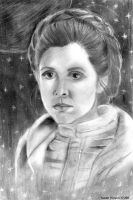 Leia on Hoth by khinson