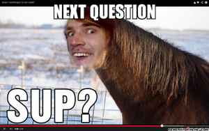 NEXT QUESTION PEWDIEPIE by Technicallyderped