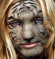 tigre blanco by eict