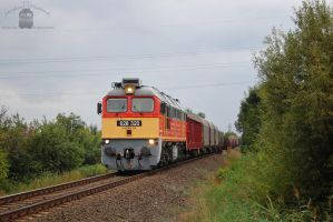 628 320 with freight train in Gyorszabadhegy by morpheus880223
