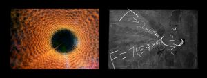 Coronal Flux Diptych by Ravncat